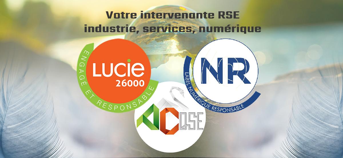 Découvrez nos compétences RSE et Numérique Responsable